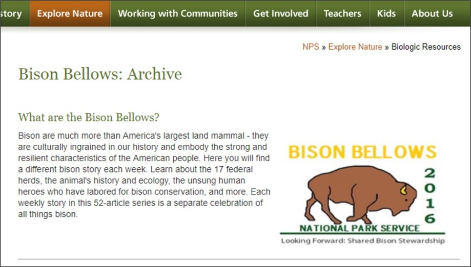 BisonBellows